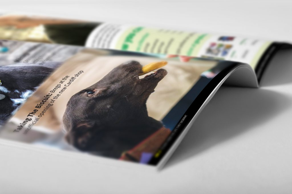 Brochure Inside 10
